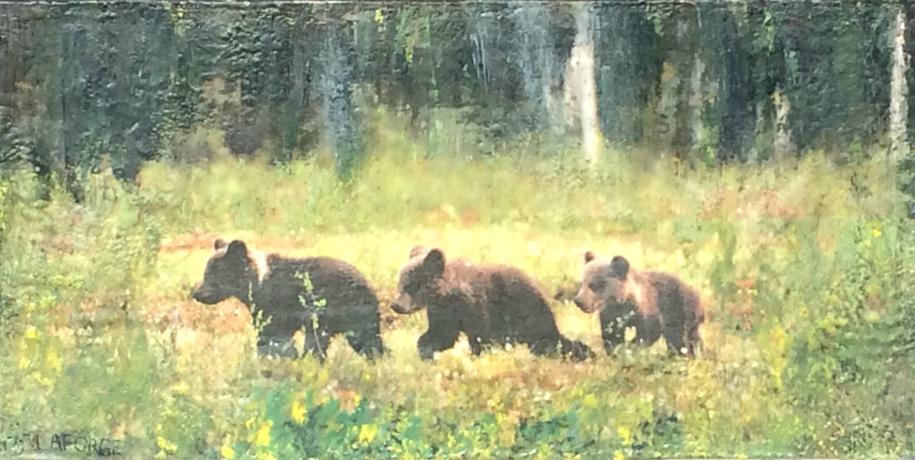 LaForge.The Three Little Bears