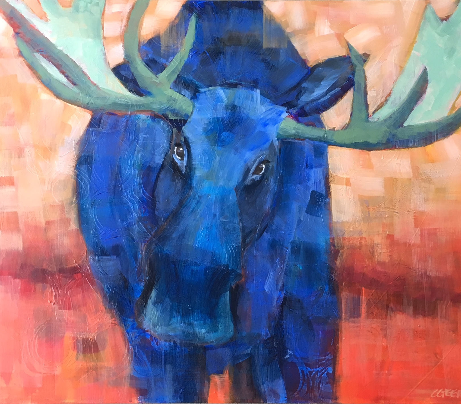 Geerts.Blue Moose
