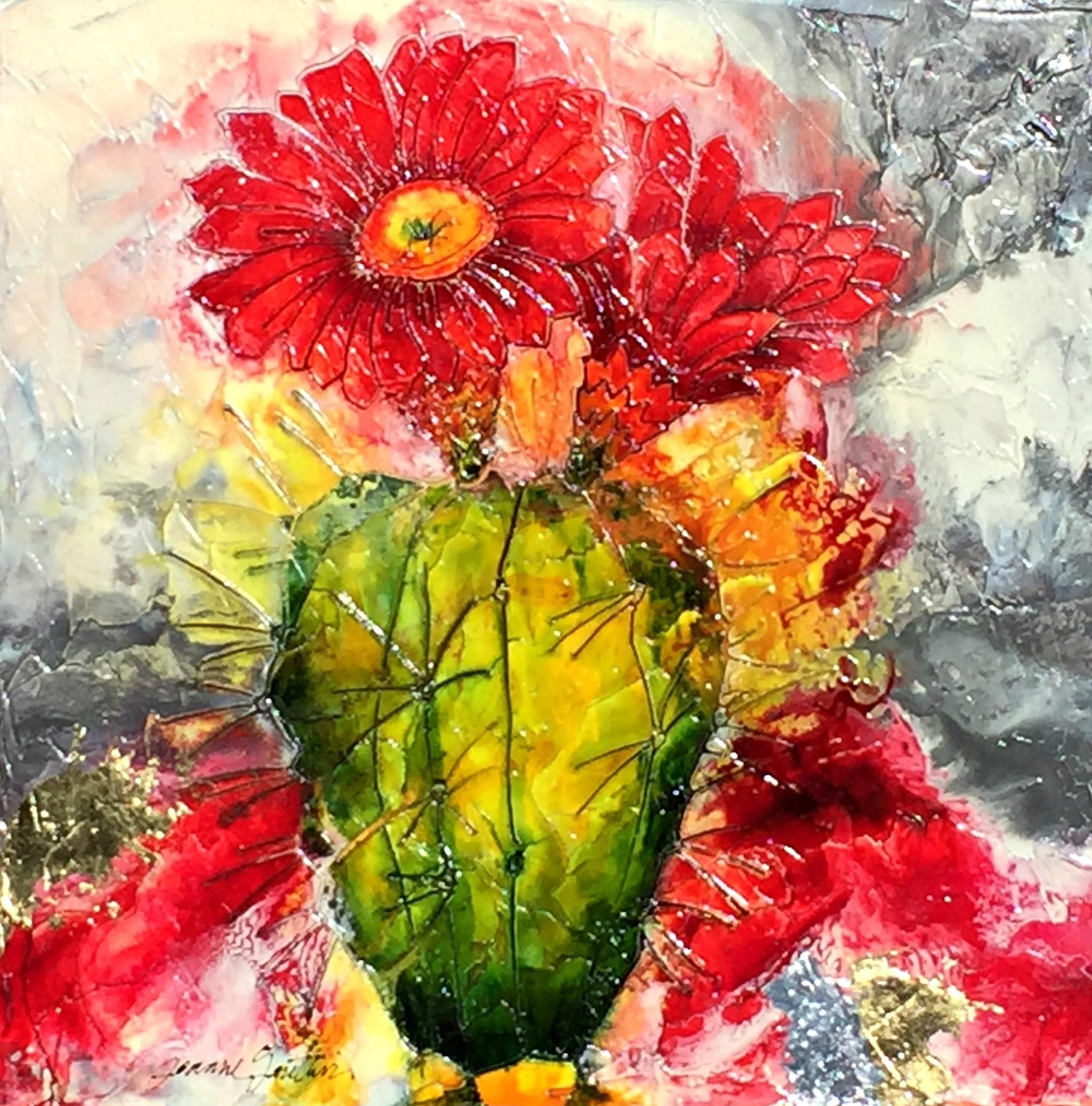 Gauthier.Flowering Cactus 2