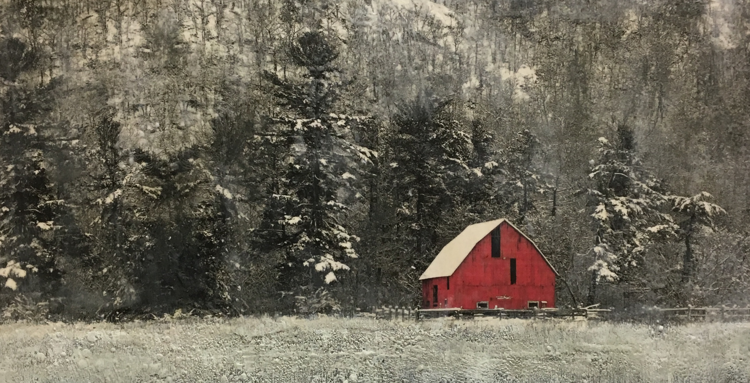 Sanctuary, encaustic painting by Lee Anne LaForge | Effusion Art Gallery + Cast Glass Studio, Invermere BC