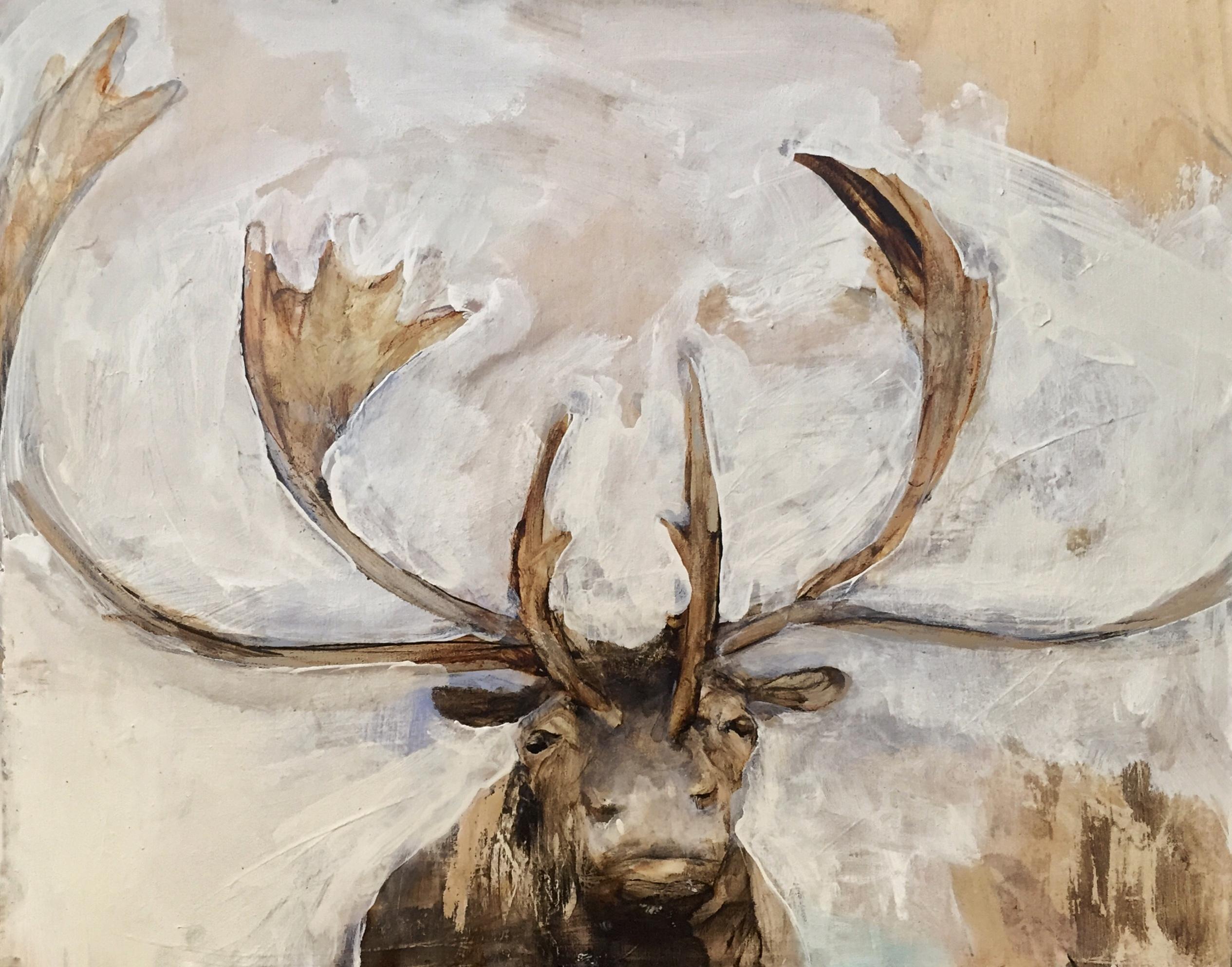 haba.antlers4