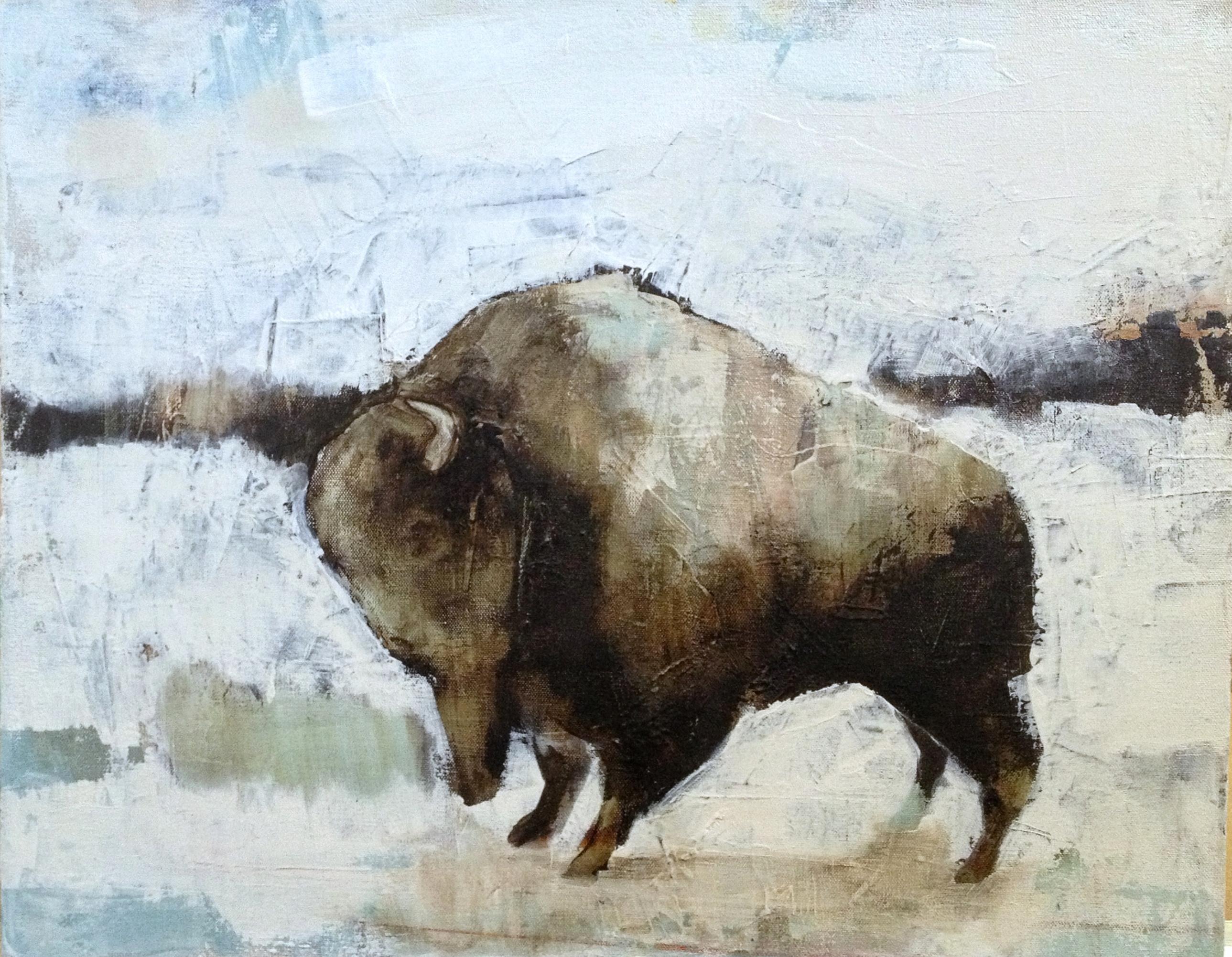 haba.bisoni