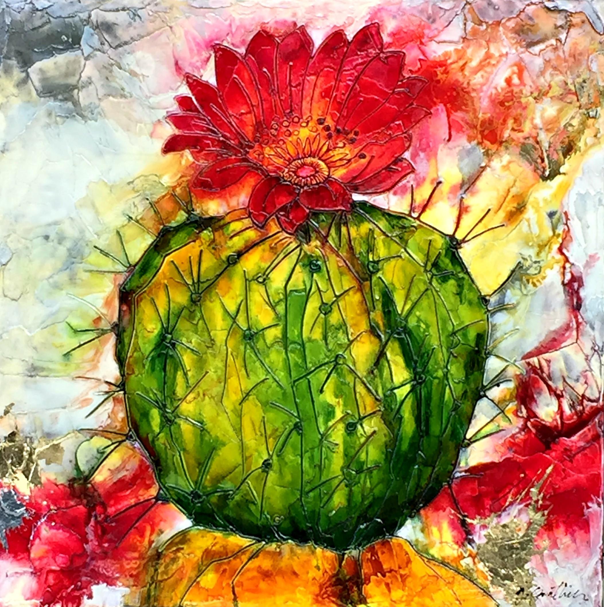 Gauthier.Flowering Cactus 1