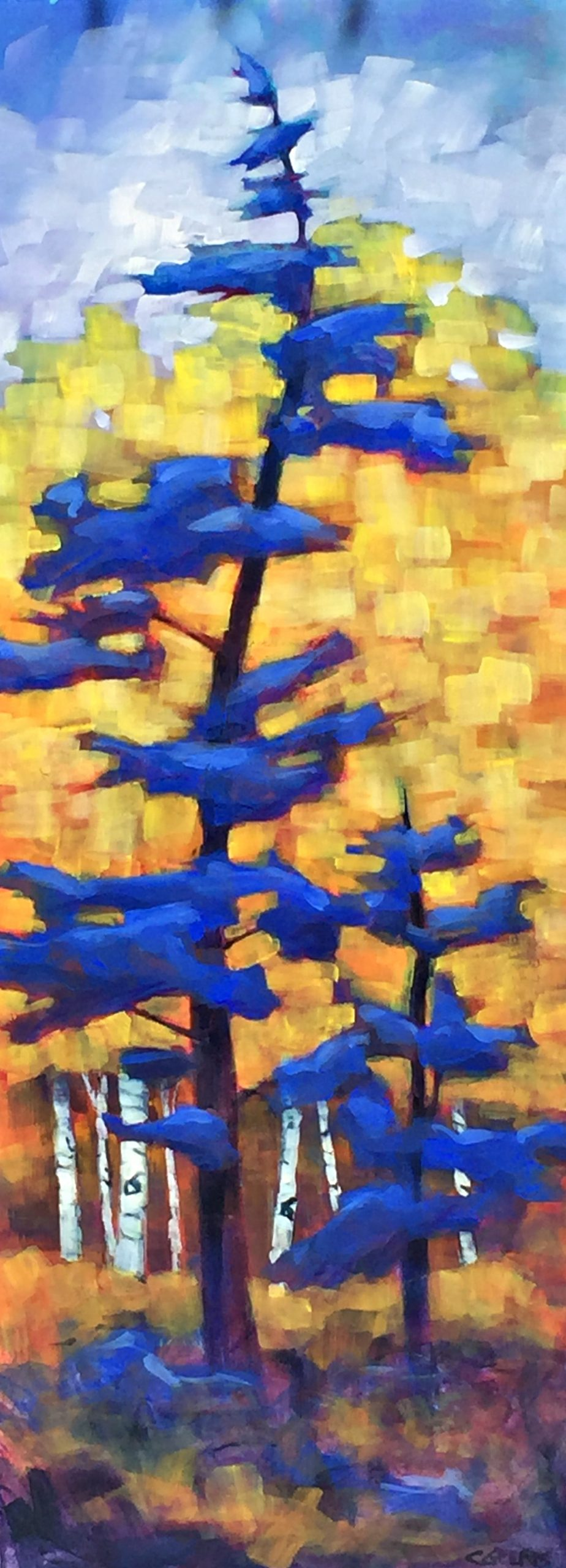 Blue Spruce, acrylic tree painting by Connie Geerts | Effusion Art Gallery + Cast Glass Studio, Invermere BC