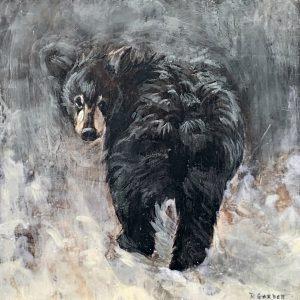 Baby Bear 59-01, encaustic bear cub painting by Paul Garbett | Effusion Art Gallery + Cast Glass Studio, Invermere BC