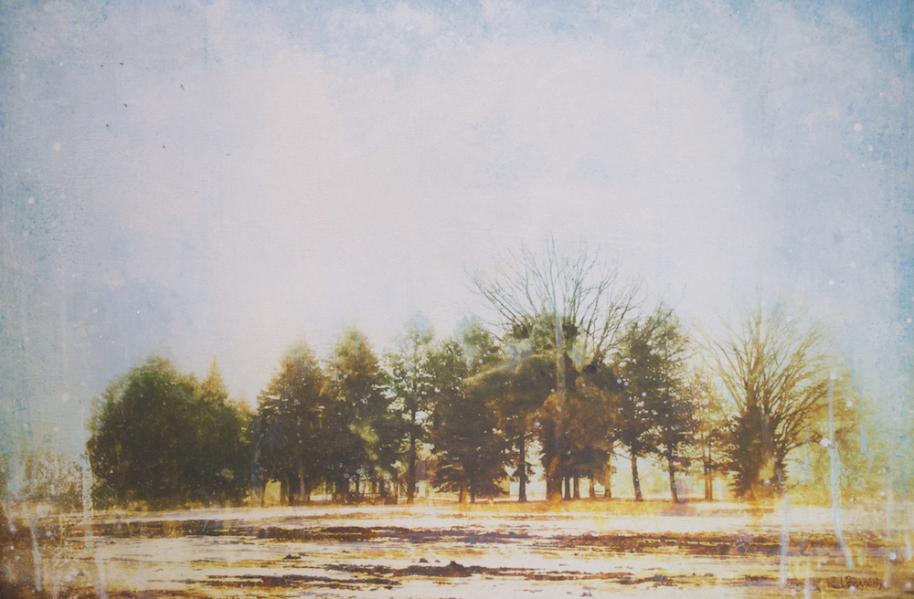 The Ties that Bind, landscape painting by Lori Bagneres | Effusion Art Gallery + Cast Glass Studio, Invermere BC