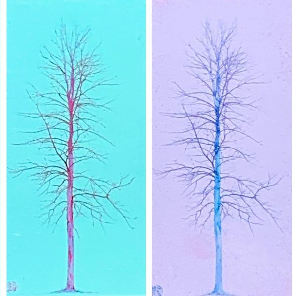 Solitaire, pastel tree painting by Lori Bagneres | Effusion Art Gallery + Cast Glass Studio, Invermere BC